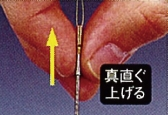 Daiwa Flame Hawk P1-85M rod